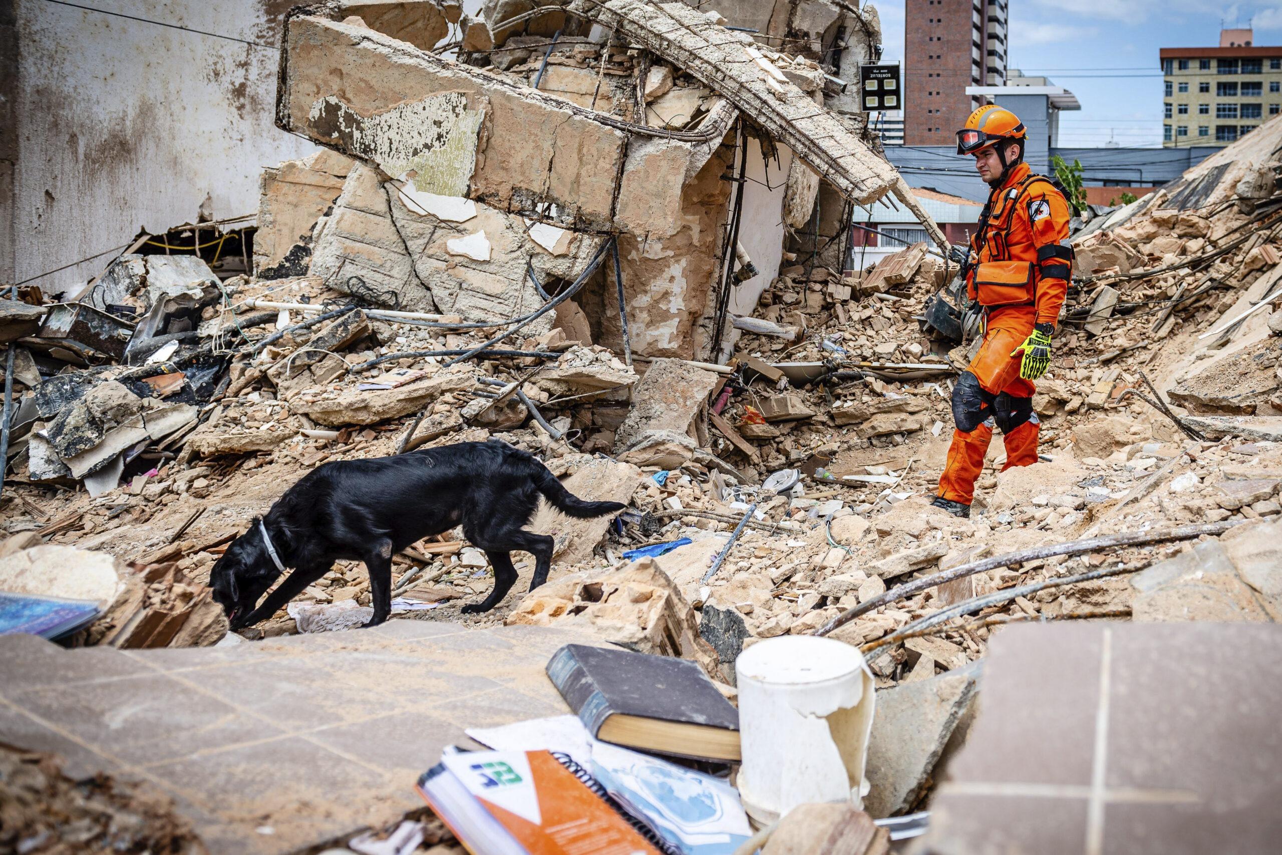 forças de segurança trabalham para resgatar pessoas com vida